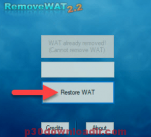 Removewat 2020 Activator For Windows 7, 8, 10 Official By TeamDaz